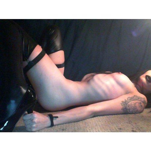 escort stockholm homoseksuell myfreewebcam
